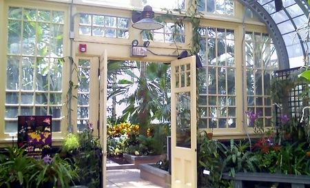 télikert - növények elhelyezése